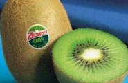 Kiwi - siêu phẩm chống lão hóa
